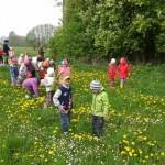 Spacer przedszkolaków