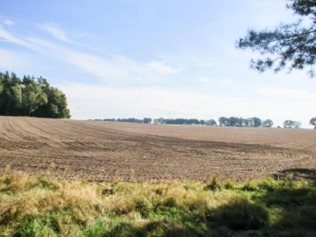 ziemia, gleba